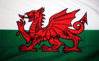 WALES NYLON DELUXE QUALITY - 5 X 3 FLAG